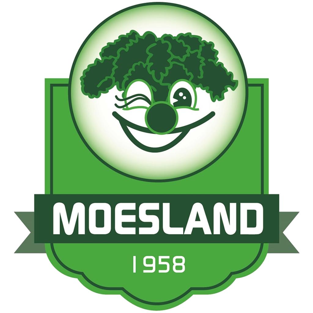 Logo stichting Carnval de Moeslanden
